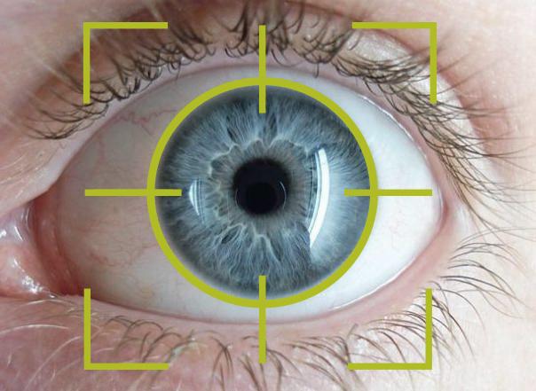 detail image of an eye