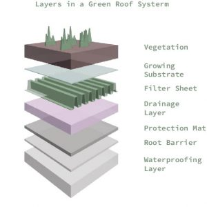 greenroofdiagram